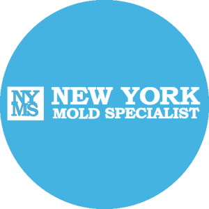 New York Mold Specialist Logo(Round)